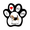 Make Your Own Personalized Paw Print Magnet