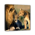 Kissing Mom  Lions Mini Canvas 6  x 6  (Stretched)