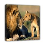 Kissing Mom  Lions Mini Canvas 8  x 8  (Stretched)
