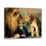 Kissing Mom  Lions Canvas 10  x 8  (Stretched)