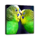 Kiss And Love Lovebird Mini Canvas 6  x 6  (Stretched)
