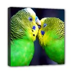 Kiss And Love Lovebird Mini Canvas 8  x 8  (Stretched)