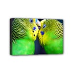 Kiss And Love Lovebird Mini Canvas 6  x 4  (Stretched)