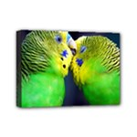 Kiss And Love Lovebird Mini Canvas 7  x 5  (Stretched)