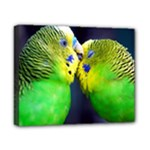 Kiss And Love Lovebird Canvas 10  x 8  (Stretched)