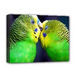 Kiss And Love Lovebird Deluxe Canvas 16  x 12  (Stretched)