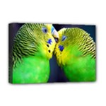 Kiss And Love Lovebird Deluxe Canvas 18  x 12  (Stretched)
