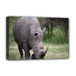 Wild Animal Rhino Deluxe Canvas 18  x 12  (Stretched)