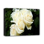 White Rose Deluxe Canvas 16  x 12  (Stretched)