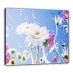White Gerbera Flower Refresh From Rain Canvas 24  x 20  (Stretched)