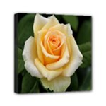 Yellow Rose Mini Canvas 6  x 6  (Stretched)
