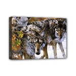 Wolf Family Love Animal Mini Canvas 7  x 5  (Stretched)