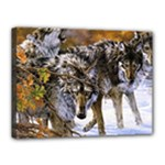 Wolf Family Love Animal Canvas 16  x 12  (Stretched)