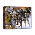 Wolf Family Love Animal Deluxe Canvas 14  x 11  (Stretched)
