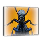 Animal Oil Beetle Canvas 14  x 11  (Stretched)