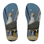 Je 002 116  Jacquei Essex Two Gulls At Rest Women s Flip Flops
