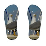 Je 002 116  Jacquei Essex Two Gulls At Rest Kid s Flip Flops