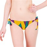 Bursting Star Poppy Yellow Violet Teal Purple Bikini Bottom
