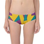 Bursting Star Poppy Yellow Violet Teal Purple Classic Bikini Bottoms