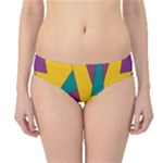 Bursting Star Poppy Yellow Violet Teal Purple Hipster Bikini Bottoms