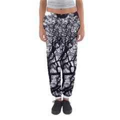 Tree Fractal Women s Jogger Sweatpants by BangZart