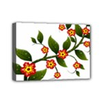 Flower Branch Nature Leaves Plant Mini Canvas 7  x 5