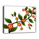 Flower Branch Nature Leaves Plant Canvas 14  x 11
