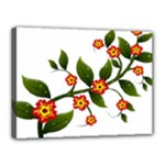 Flower Branch Nature Leaves Plant Canvas 16  x 12