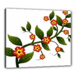 Flower Branch Nature Leaves Plant Canvas 24  x 20