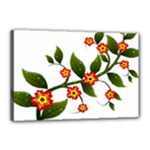 Flower Branch Nature Leaves Plant Canvas 18  x 12