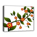 Flower Branch Nature Leaves Plant Deluxe Canvas 20  x 16