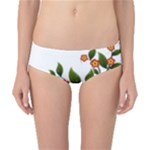 Flower Branch Nature Leaves Plant Classic Bikini Bottoms