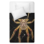 Insect Macro Spider Colombia Duvet Cover Double Side (Single Size)