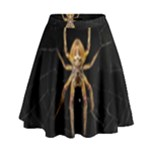 Insect Macro Spider Colombia High Waist Skirt