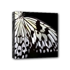 butterfly-pop-art-print-13 Mini Canvas 4  x 4  (Stretched)