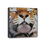 wallpaper_15015 Mini Canvas 4  x 4  (Stretched)