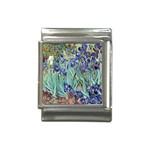 Irises by Vincent van Gogh 1898 Italian Charm (13mm)