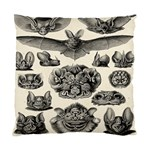 Haeckel Chiroptera Standard Cushion Case (Two Sides)