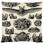 Haeckel Chiroptera Large Cushion Case (Two Sides)