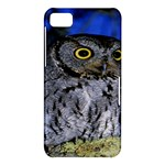 Owl In The Dark BlackBerry 10 Dev Alpha A (Z10) Hardshell Case
