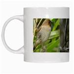 Small Birds White Mug