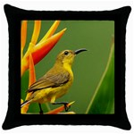 Colorful Bird Throw Pillow Case (Black)