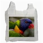 Lorikeet, Rainbow Recycle Bag (One Side)