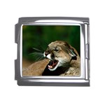 Laught Out Loud  Snarl Cougar Mega Link Italian Charm (18mm)