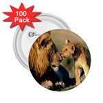 Kissing Mom  Lions 2.25  Button (100 pack)