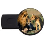 Kissing Mom  Lions USB Flash Drive Round (4 GB)