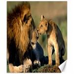 Kissing Mom  Lions Canvas 8  x 10