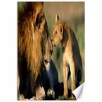 Kissing Mom  Lions Canvas 12  x 18