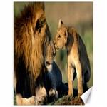Kissing Mom  Lions Canvas 18  x 24