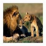 Kissing Mom  Lions Glasses Cloth (Medium, Two Sides)